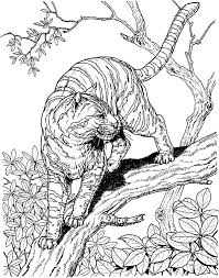 Hard Animal Coloring Pages Realistic Animal Coloring Pages Real