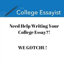 essay writing help needed nowadaysis what you have been looking for essay writing help needed shankla by paves