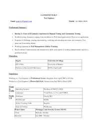 Resume Template Ms Word Business To Business Sales Resume