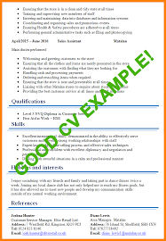 Good Cv Examples For First Job 7 Magnolian Pc