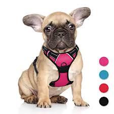 Pet Supplies Juxzh Soft Front Range Dog Harness 3m