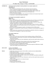 Database Assistant Sample Resume Database Assistant Resume Samples Velvet Jobs 1