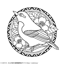 無料ぬりえ Tagged Tweets And Download Twitter Mp4 Videos Twitur