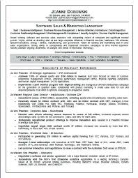 Resume Format For Sales Executive Click Here To Download This