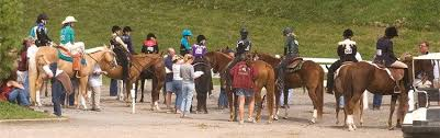 4 H Horse Program Virginia Cooperative Extension Virginia Tech