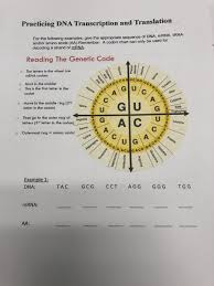 Codon Chart Circle Solved Practicing Dna Transcription And Translation For T