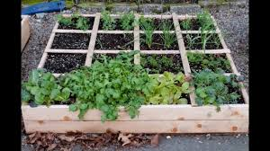 Small Picture Raised Bed Garden Design Raised Garden Bed Design Raised Bed
