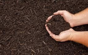 termite resistant mulch. Beautiful Mulch Does Mulch Attract Termites Intended Termite Resistant Mulch L