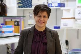 Aida Castellanos Páez – CIBBIM-Nanomedicine