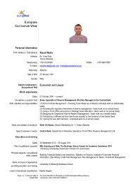 Curriculum Vitae Inspiration CV R MOLLA