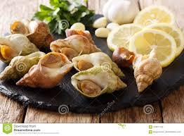 El Bucino De Los Crustáceos De Los Mariscos Crudos, El Bulot De Los  Caracoles De Mar Para Cocinar El Primer Y Los Ingredientes En Una Pizarra  Suben En Una ...