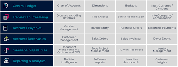 Microsoft Dynamics 365 Business Central Finance Solutions