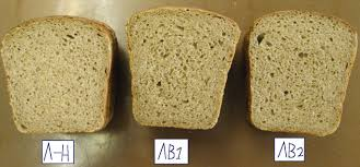 Влияние новых видов заквасок на качество ржано пшеничного хлеба