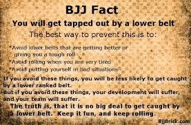 Quote BjjBrick Gorgeous Jiu Jitsu Quotes
