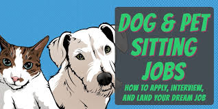 How To Get Dog Pet Sitting Jobs Pet Business Masters