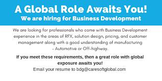 Business Development Rfx Pre Sales Solution Design And