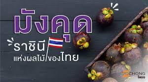 มังคุด ราชินีแห่งผลไม้ของไทย ?   เครื่องดื่มโพชง น้ำสมุนไพร 3 ชนิด
