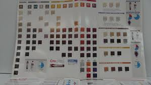 Chi Ionic Permanent Shine Hair Color Chart Chi Hair Color Charts Sbiroregon Org