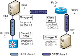 BGP and OSPF  How do they interact    Noction