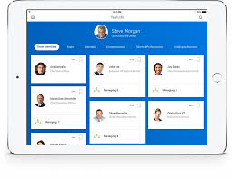 Workday Hris Org Chart Keyword Data Related Workday Hris