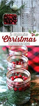 creative homemade christmas decorations. 5 Minute Cranberry Cedar Christmas Luminaries. Easy DecorationsDiy Creative Homemade Decorations H