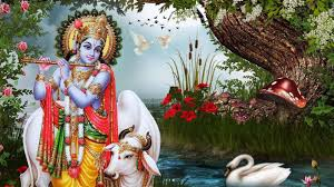 Krishna Krishna Full Hd God 599727 Hd Wallpaper