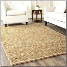 A Outdoor Area Rugs 8x10 S Cheap
