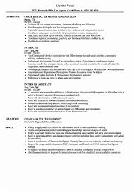Free Resume Templates Word Fresh Hr Executive Resume Samples Image ...