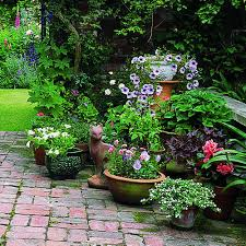 container gardens. Gardening In Containers Container Gardens