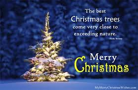 nice christmas tree quote with image