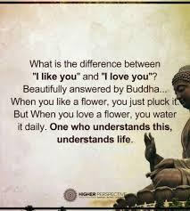 Buddha Quotes On Death Inspiration Buddhist Quotes On Death Alluring Buddha Quotes About Life Death