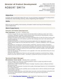 Building A Free Resumes Director Of Product Development Resume Samples Qwikresume