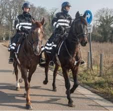 Politie Te Paard In Zone Demerdal Diest Het Belang Van Limburg