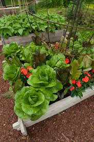 Ornamental Kitchen Garden 17 Best Images About Beautiful Vegetable Gardens On Pinterest