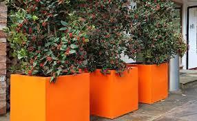 stylish garden planters for inside