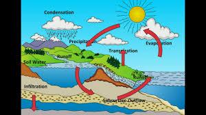 Water Cycle Chart For Class 3 Www Bedowntowndaytona Com