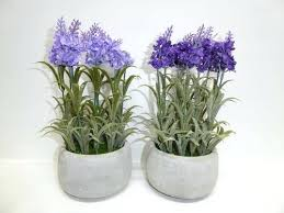 gardens artificial potted plants lavender in white concrete round pot available 2 large outdoor