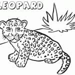 Leopard Coloring Pages Coloring Pages For Kids