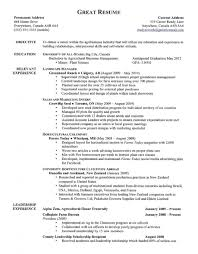 Examples Of A Good Resume Systematic Pictures Amazing Example 14