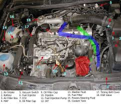 diy installing the mann provent ccv filter tdiclub forums here is a diagram showing the suggested hose routings for installation in a 1999 5 2003 tdi thanks to gewilli for the original engine diagram