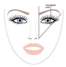 how to shape eyebrows diagram. how to shape your brows diagram eyebrows a