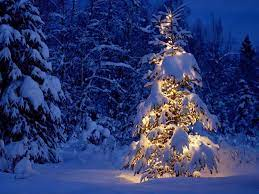 Beautiful Christmas Wallpapers Free ...