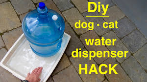How to make a  DOG/CAT  Large  Self filling  Water Dispenser - YouTube