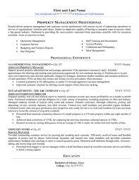Sample Management Resume 45397 Cd Cd Org