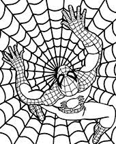 So while you're here be sure to print off a few of our spiderman coloring pages. 40 Spider Man Coloring Pages Topcoloringpages Net