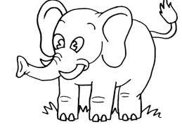 Disegni Di Animali Da Stampare E Colorare Gratis Migliori Pagine