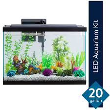 Aqua One Replacement Light Unit Aqua Culture 20 Gallon Aquarium Starter Kit With Led Online