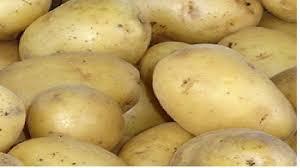alt kentang