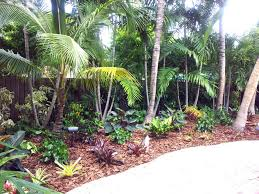 Tropical Landscape Ideas for Backyard with Palm Trees Fantastic Tropical  Landscape Ideas With Amazing Palm Trees For Stylish Backyard Decor