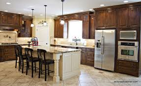 Picture Ideas For Kitchen Endearing Kitchen Style Ideas For A Amazing  Kitchen Remodel Ideas Of Your Kitchen With Amazing Design 13